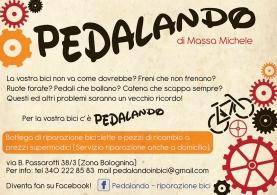 pedalando_scala marrone
